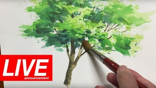 [Eng sub] Watercolor by Shibasaki Live Stream in YouTube Space Tokyo