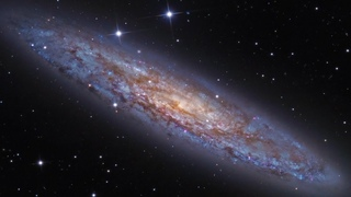 LA  GALASSIA  DELLO  SCULTORE   (NGC 253)