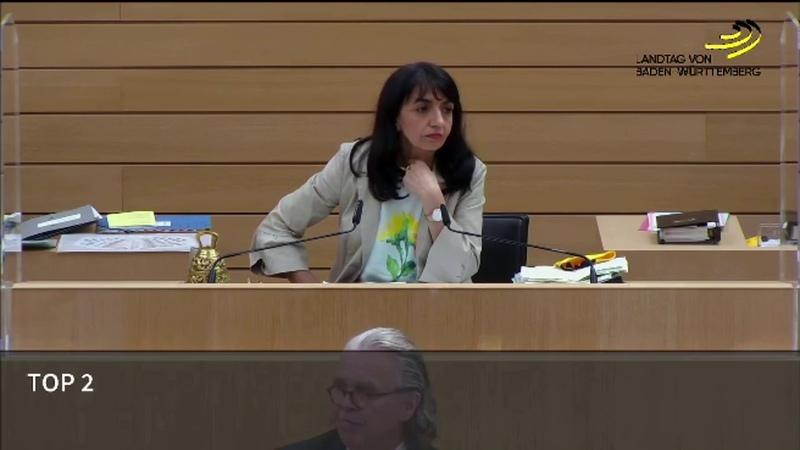 Dr. Fichtner nennt die Verantwortlichen für die Randale in Stuttgart und fliegt aus dem Parlament!