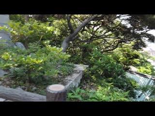 Japan Seaside Walk - Enoshima - My Favorite Daytrip from Tokyo! - 4K 60FPS Binau