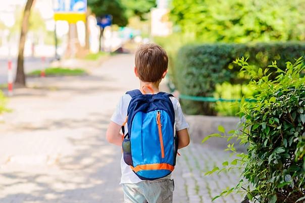 Что лучше: Жить рядом со школой или далеко от неё