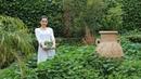 Փիփերթով Տաք Աղցան - Արագ Ընթրիք - Malva Warm Salad - Heghineh Cooking Show in Armenian