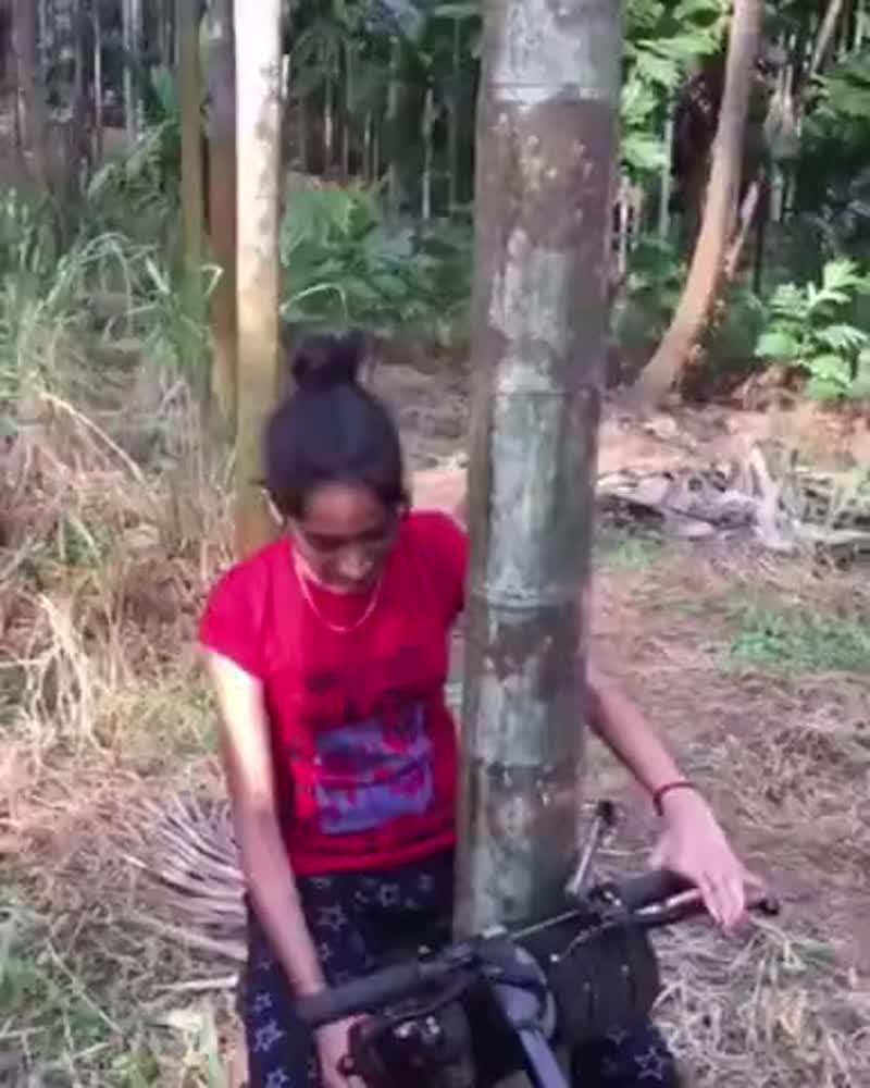Интересная машинка для лазания по деревьям bynthtcyfz vfibyrf lkz kfpfybz gj lthtdmzv