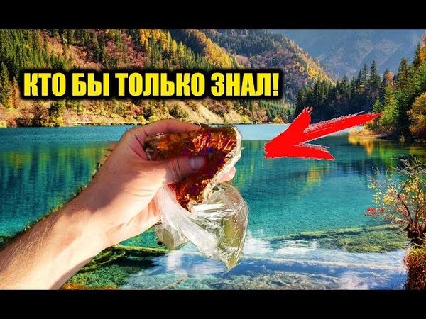 Стоит 3 рубля а косит всю рыбу как на 10000 тысяч! Реакция рыбы на аттрактант черный перец