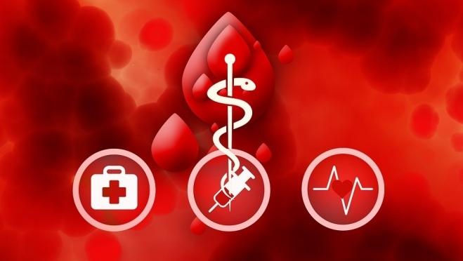 В Марий Эл 3 339 почётных доноров отметят Всемирный день донора крови