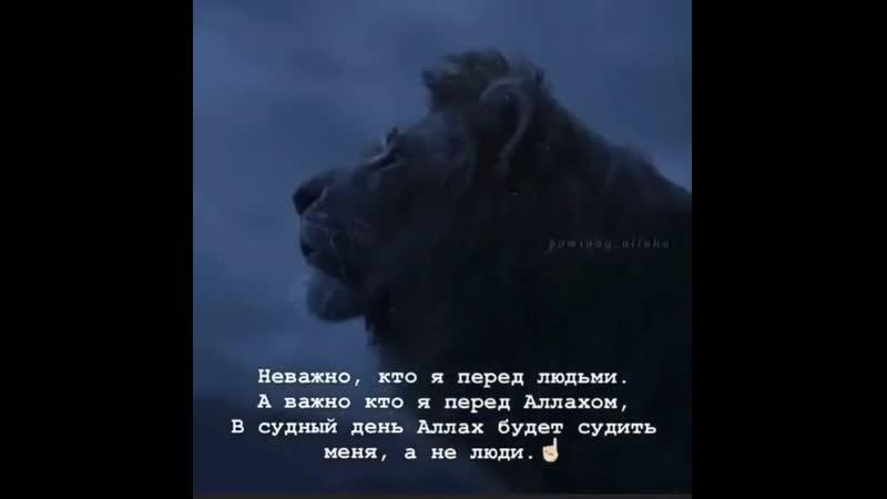 Будем львами Аллагьа а не заложниками мнение людей