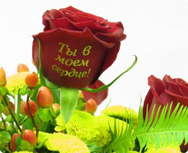 картинка букеты цветов картинки с надписью люблю тебя эффект давно