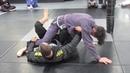 Sweeps from Shin-to-Shin Guard (Lachlan Giles)a