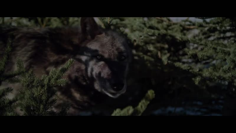Серенький волчок Hunter Hunter (2020) HD Трейлер на английском