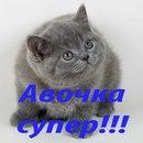 Фотоальбом человека Вячеслава Попова