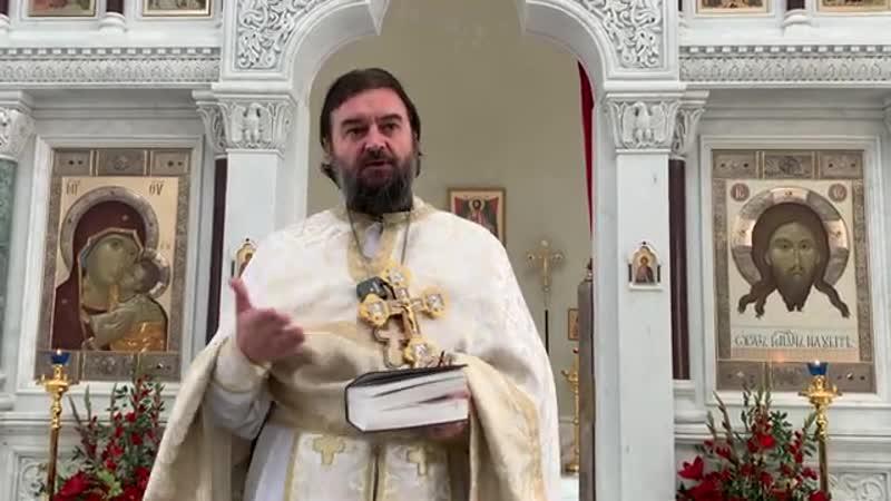 Мудрость рождает веру надежду и любовь Протоиерей Андрей Ткачёв