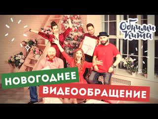 Обними Кита - Новогоднее видеообращение