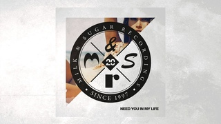 Milk & Sugar feat. Roland Clark - Need You in My Life (Superlover Remix)