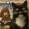 Настолки ~Пират~