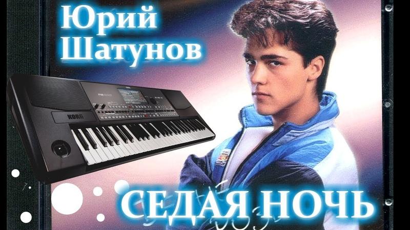 Ю. Шатунов СЕДАЯ НОЧЬ на синтезаторе Ласковый май Как играть