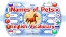 Ders Evcil Hayvanların İsimleri Resimlerle İngilizce Kelime Öğrenin Kelime Kitabı