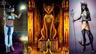 Кошка - магическое животное |  Внеземное происхождение кошачьих | Паскаты. Созвездие Лира. Сириус