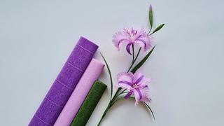 How To Make Australia Lily Paper Flower / Paper Flower / Góc nhỏ Handmade