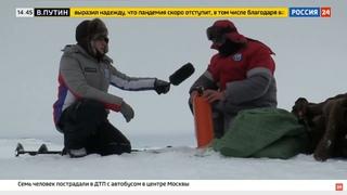 Снегоходы STELS приняли участие в комплексной экспедиции РГО на архипелаге Земля Франца Иосифа