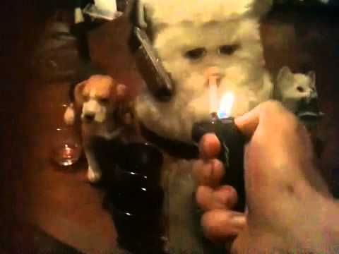 Furby smoking