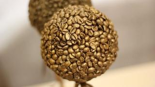 Кофейный топиарий: мастер-класс по созданию декора