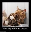 Фотоальбом Полины Лесковой