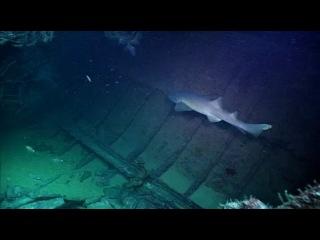ВВС Дикие Карибы Фильм 2 Рифы и затонувшие корабли