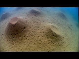 BBC: Планета Земля.  Пресная вода - серия 3