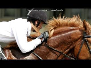 «лошади» под музыку KlaimSeyin - А мой смысл жизни, это конный спорт.. Picrolla