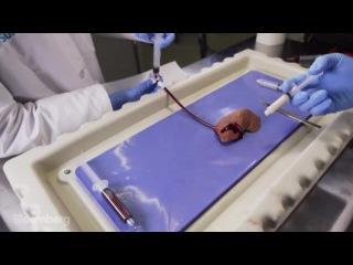 VetiGel- The Band-Aid of the Future Stops Bleeding Instantly Супергель для остановки крови за 20 секунд