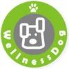 WellnessDog - спортивно-реабилитационный центр