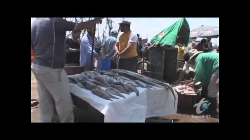 Bizarre Foods with Andrew Zimmern Morocco