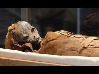 Обнаружена мумия инопланетянина