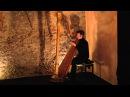 Franz Liszt - Hungarian Rhapsodie No.2 - Sylvain Blassel, harp