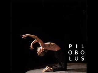 Help Silas Dance with Pilobolus
