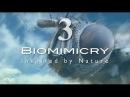 Биомимикрия. Подражание природе Biomimicry. Inspired by Nature 2011 - Упорядоченный хаос Эпизод 3
