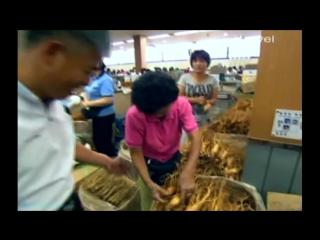 На любой вкус. Азиатская кухня (2). Корея (Путешествие, кулинария, 2009)