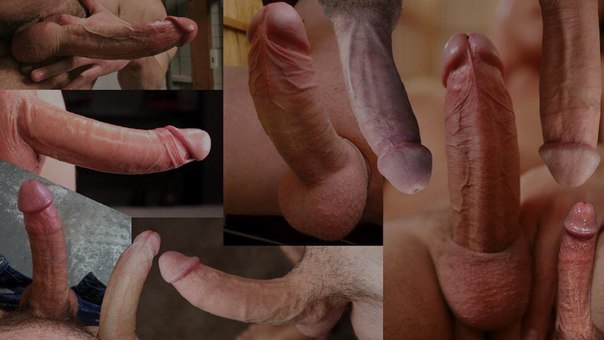 Big dick gallery free