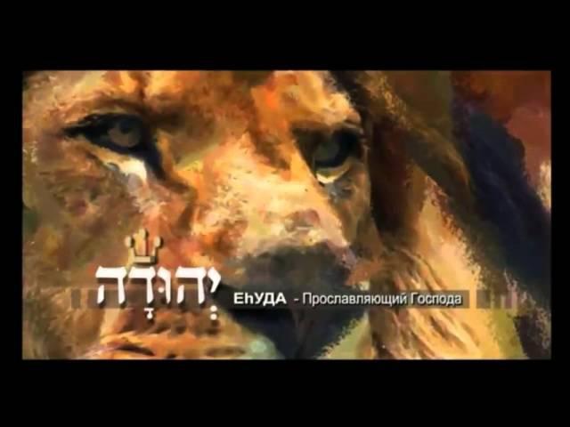 Бецалель СЫН СВЕТА Иуда Прославляющий Бога 5 5