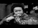 Военная песня - Журавли Клип / USSR military song - Zhuravli