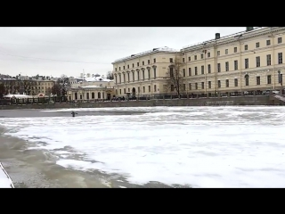 Penguin Goes for a Swim in Central St. Petersburg