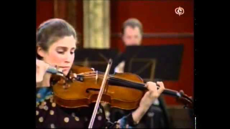 Mozart - Sinfonia Concertante in E flat Major, K. 364(320d) II. Andante