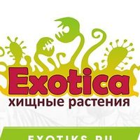 Логотип Хищные растения /Венерина мухоловка /EXOTICA/