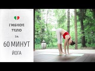 Гибкое тело за 60 минут — Йога для начинающих и продвинутых