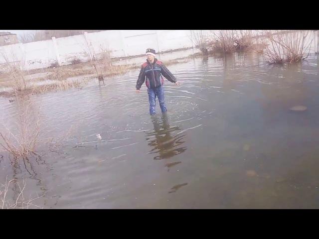 купание в лужи ЛОЛ