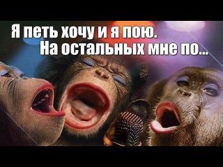 Днем рождения, картинки с днем рождения обезьяны поют