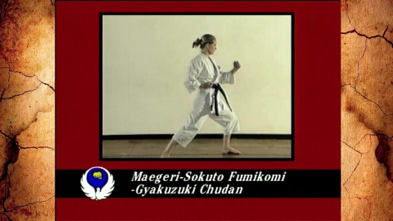Maegeri, Sokuto Fumikomi, Gyakazuki