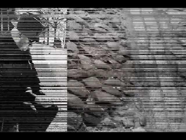 Aleksandrs Čaks Atzīšanās miglā asaro logs...