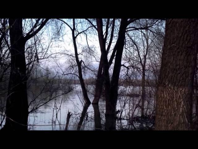 Река Обь весной Красивая природа Новосибирской области