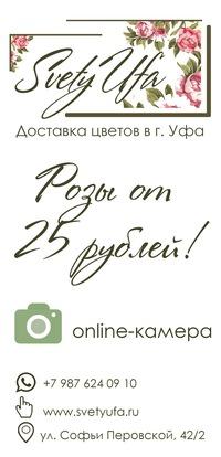 hrizantemami-kustovimi-dostavka-roz-ufa-chernikovka-buket-tsvetov-dostavka